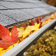 Capitol Roofing Rain Gutter with Leaves