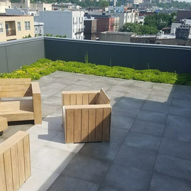 Capitol Roofing Green Plant Roof