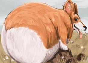 Quarantine Art: The chonky animals series by Annada Menon