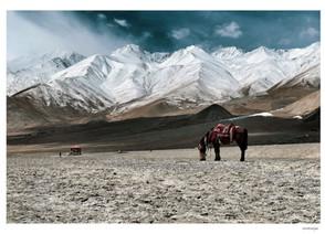 Postcards from Ladakh by Anumanjari Dutta Choudhury