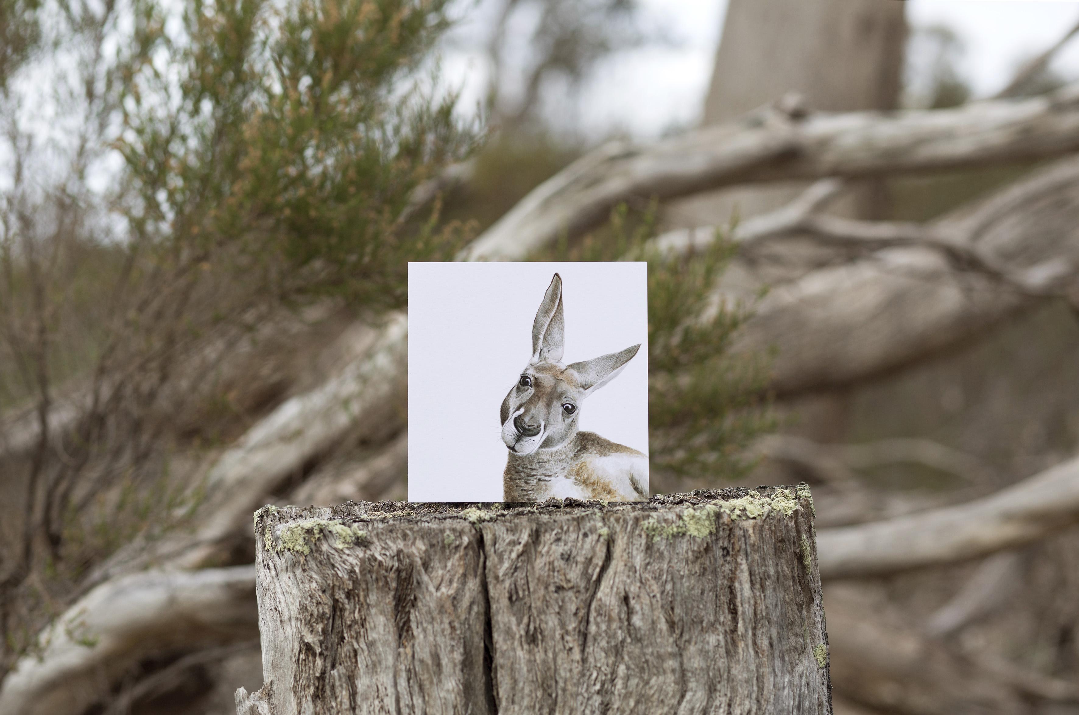 FMBD_Australian - CARD kangaroo