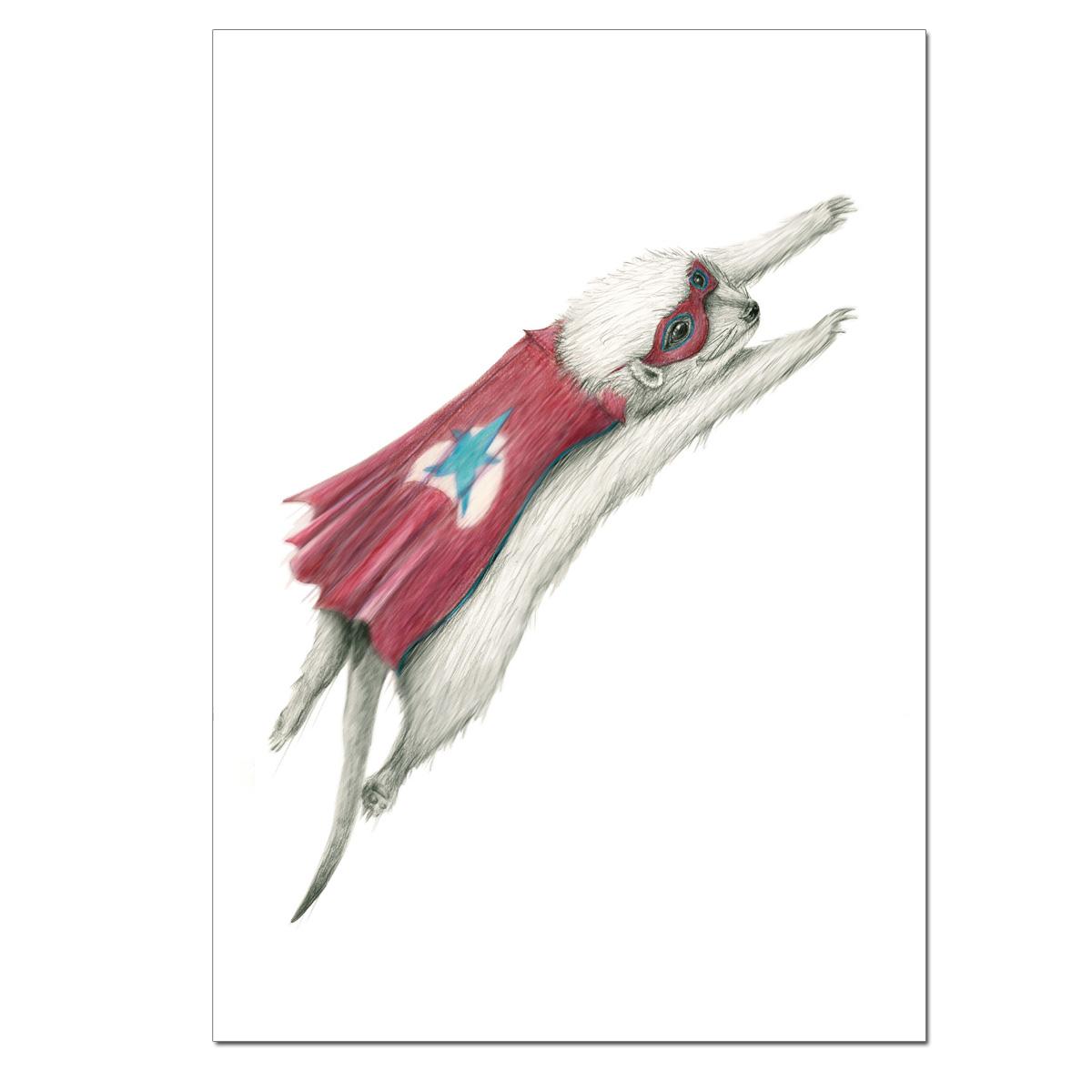 Meerkat Fly