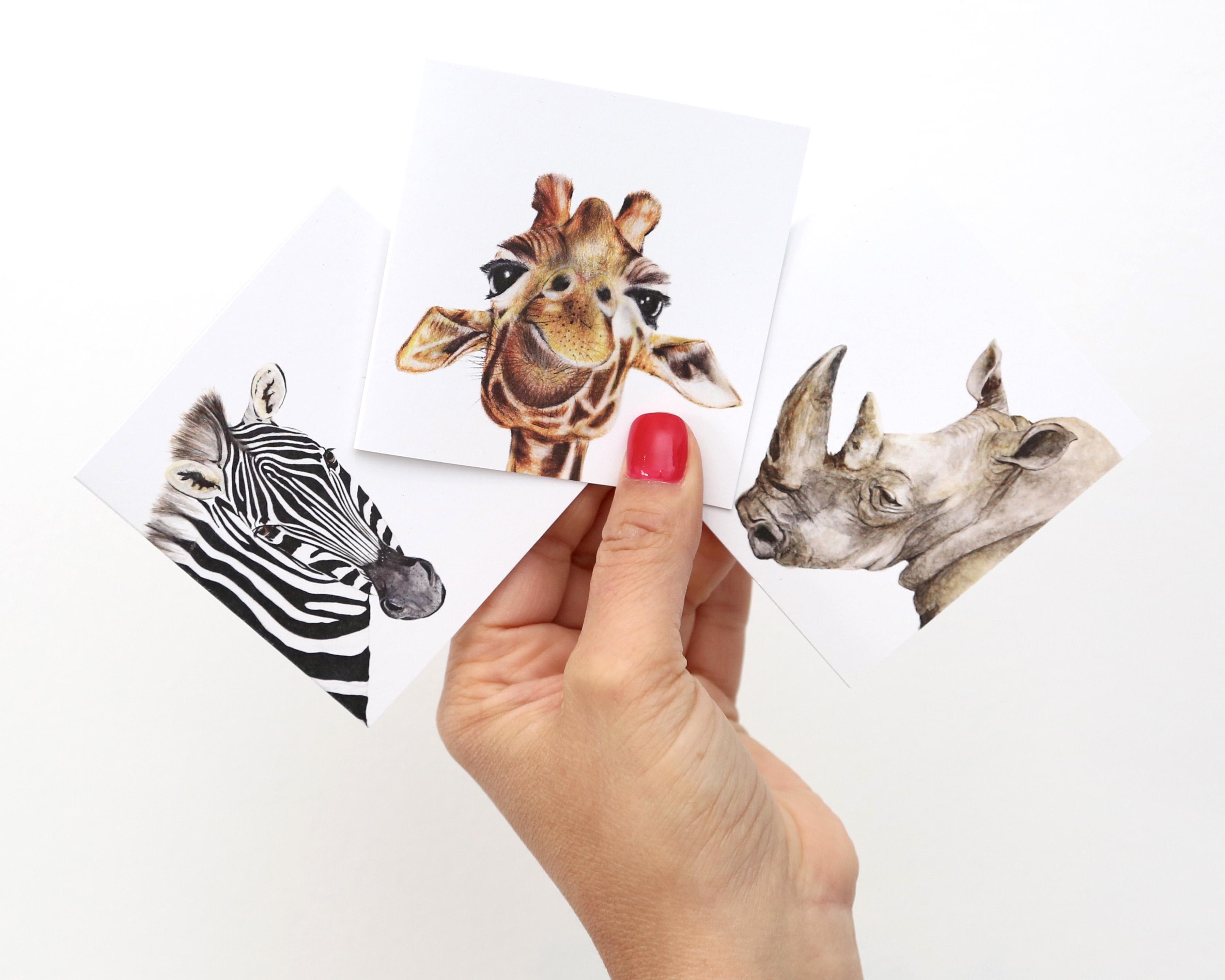 Hands w cards Safari Hi Res
