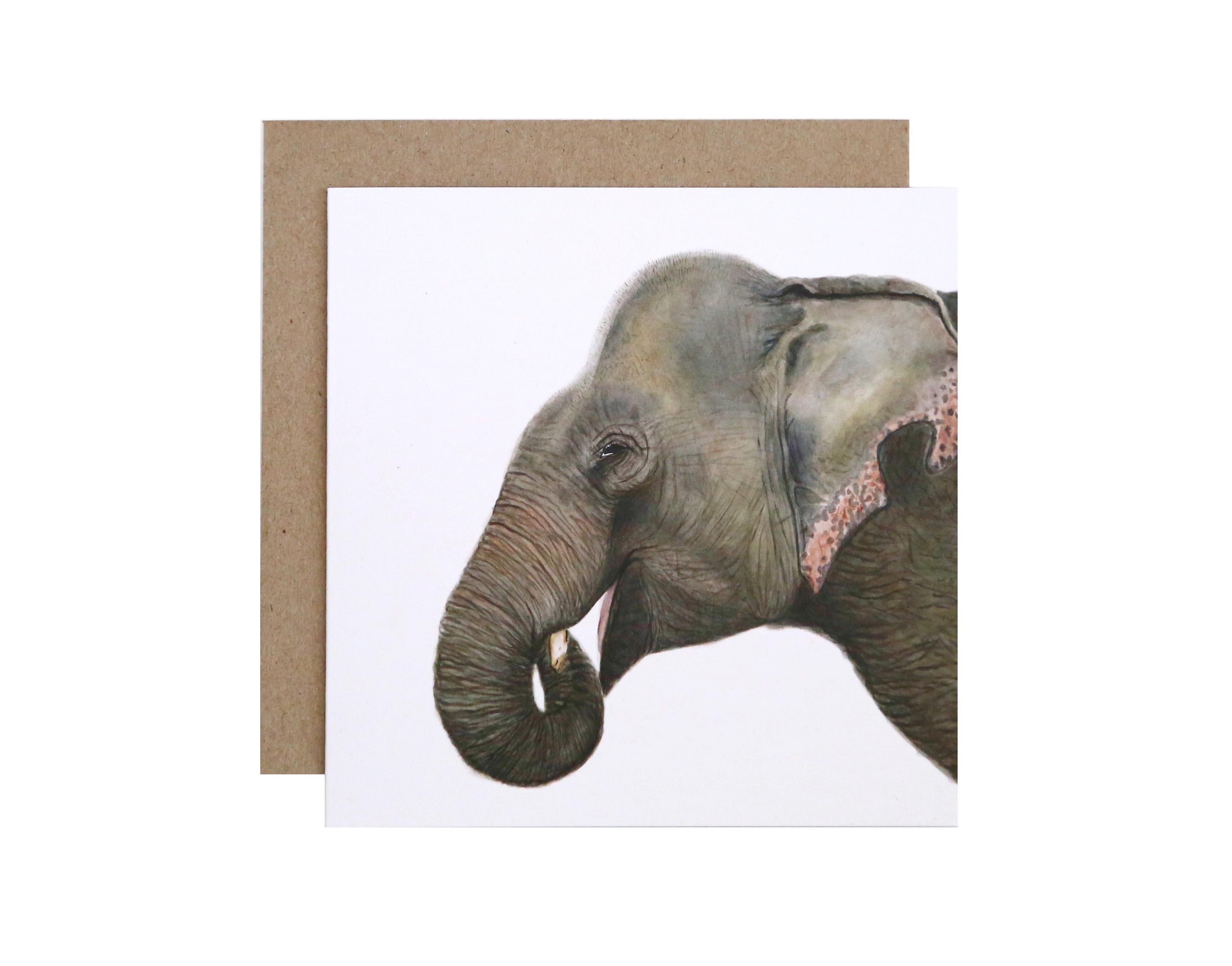 Elliot Elephant Lo Res