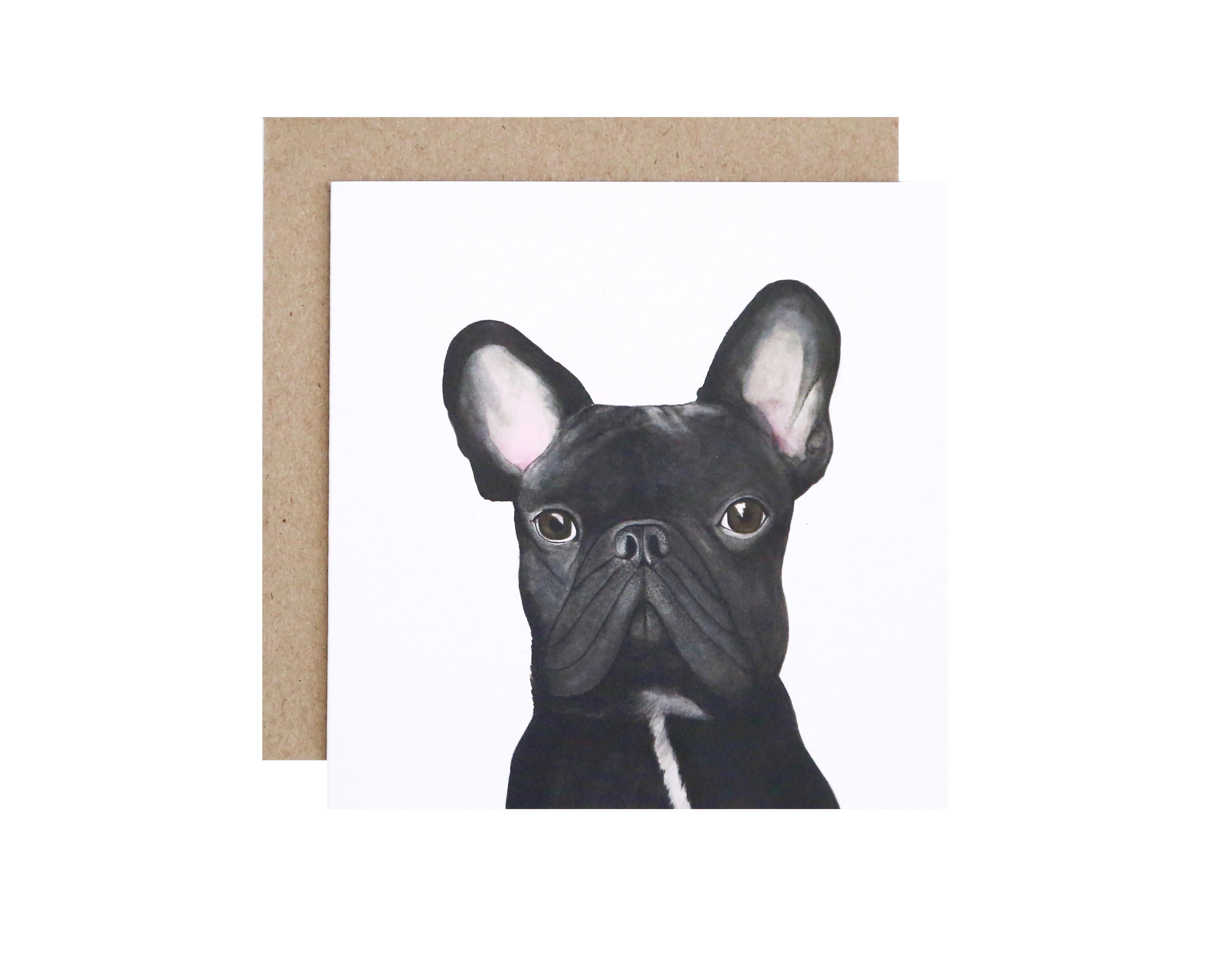 Gilbert French Bulldog Lo Res