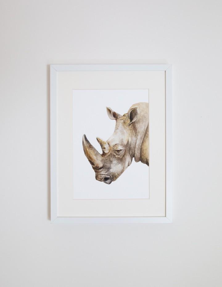 Reg the Rhino