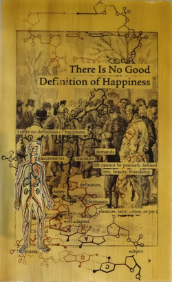 9_There_Is_No_Good_Definition_of_Happiness