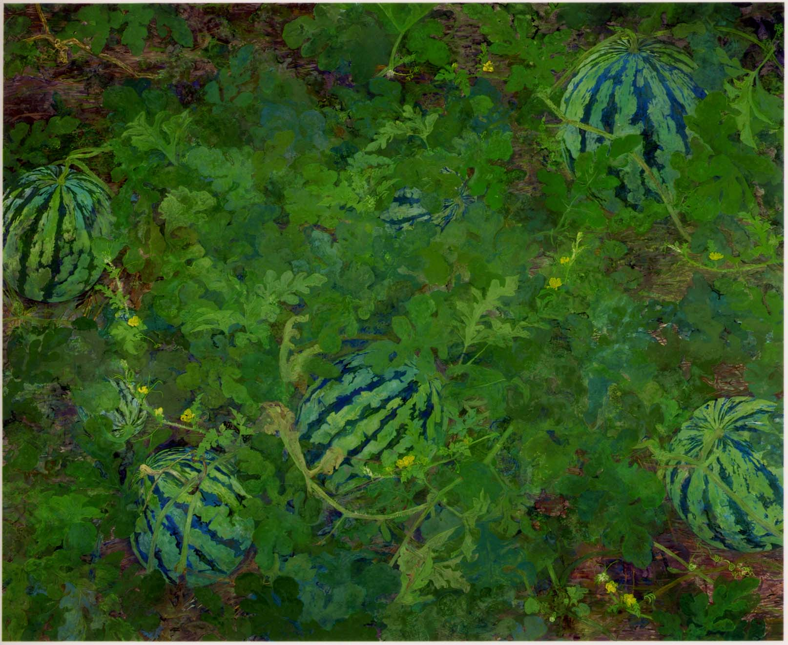 06_Watermelon 2009_230cm×186cm