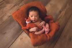 Comox Valley Newborn photographer