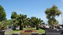 Torquay Palms