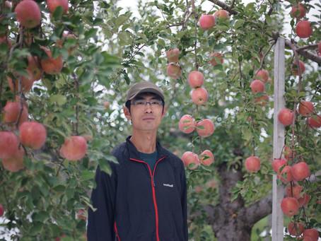 ベストタイミングのりんごを。 私がApple Gifterになるまで。