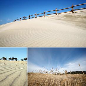 การร่วมมือกันของทะเลและลม :  เนินทรายชายฝั่งทะเล Sinduri