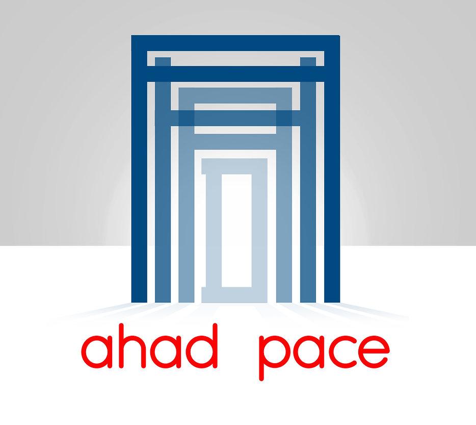 ap new new logo web6.jpg