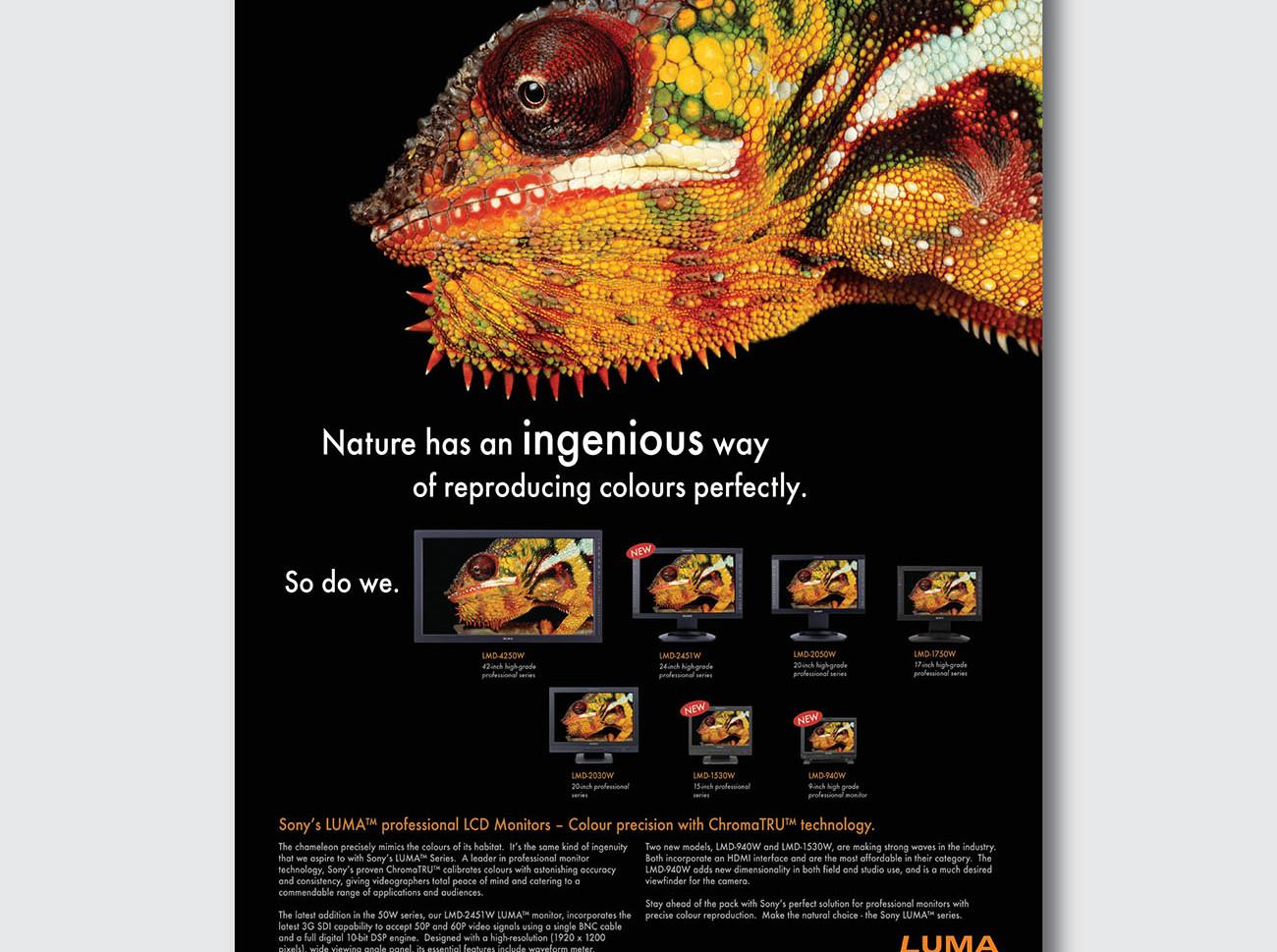 ads-02.jpg