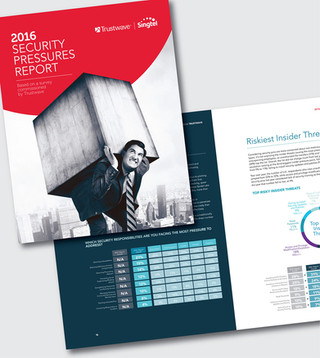 Business Reports/ Info-graphics