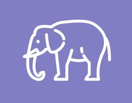 The Elephant Canvas