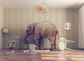 Complexity – The Elephant In The Room