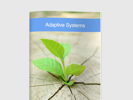 Complex Adaptive Systems Book