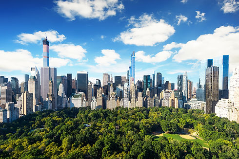 bigstock-New-York-City--central-park-v-7