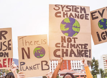 From Sustainability to Systems Change
