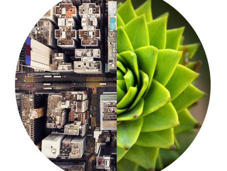 Environmental Sustainability – Topic