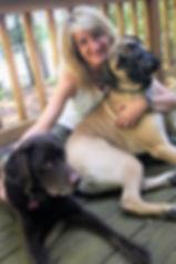 dog training, doggy daycare, dog board and train