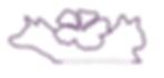 wvar logo copy.png