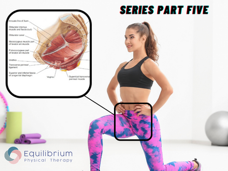 MEET YOUR PELVIC FLOOR: Series Part Five