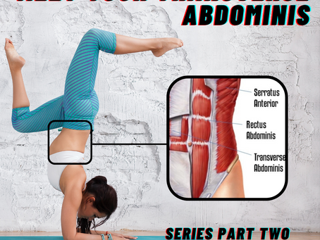 MEET YOUR TRANSVERSE ABDOMINIS: Series Part Two