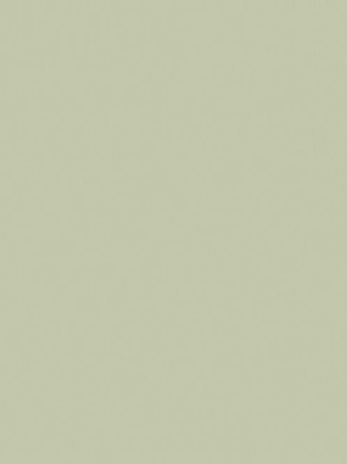 Vert de Terre No.234