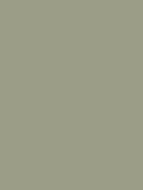 Lichen No.19