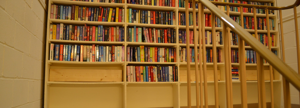 Bookcase on Stairs