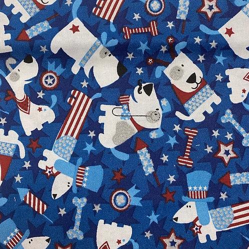 Patriotism Fun