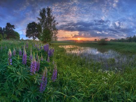 Пейзаж в Центральной России. 3 совета по съёмке