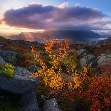 DSC_5257_CaptureOne Panorama1 copy.jpg