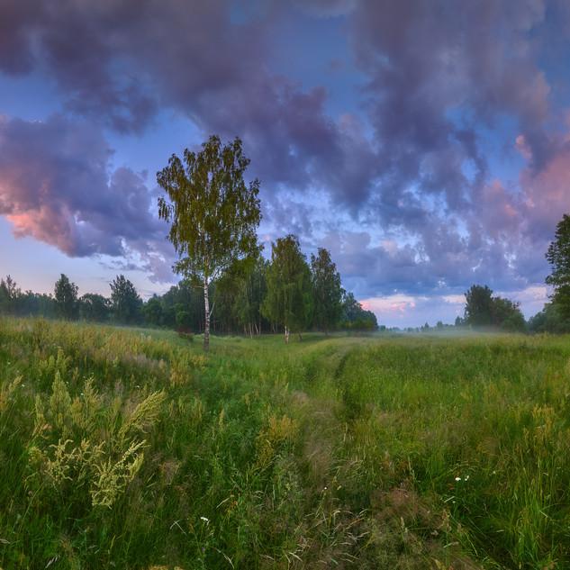 DSC_1210 Panorama1 copy.jpg