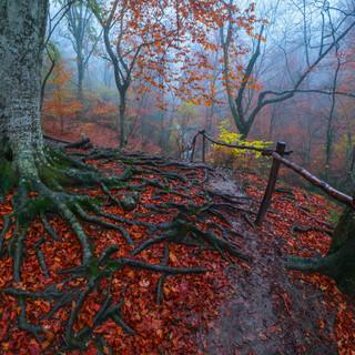 Осенью в Крыму