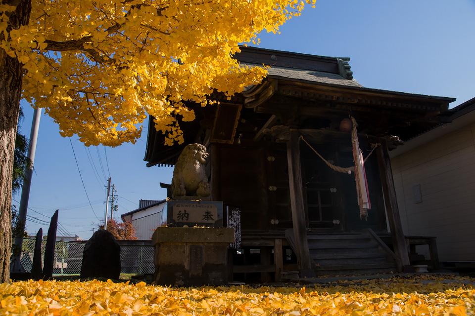 秋 八幡神社