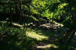 癒しの空間 森郷キャンプ場