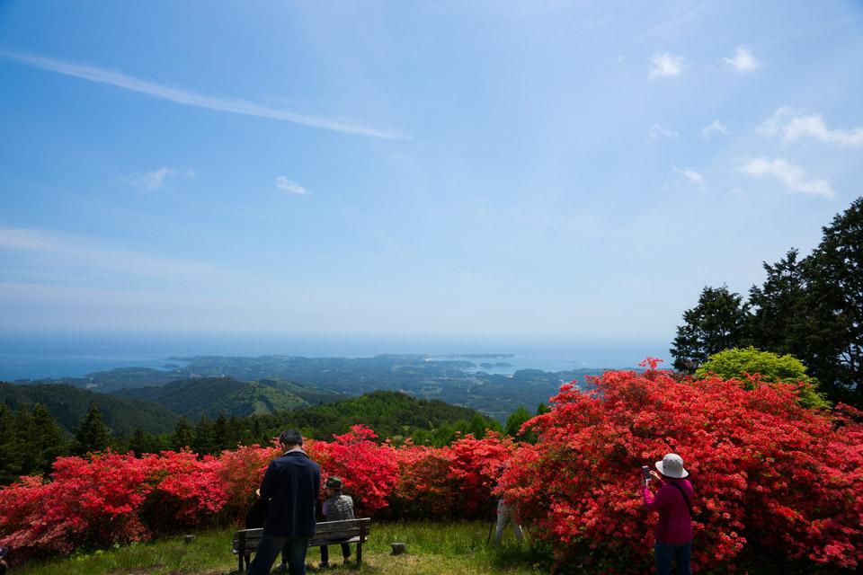 田束山のツツジと南三陸の海
