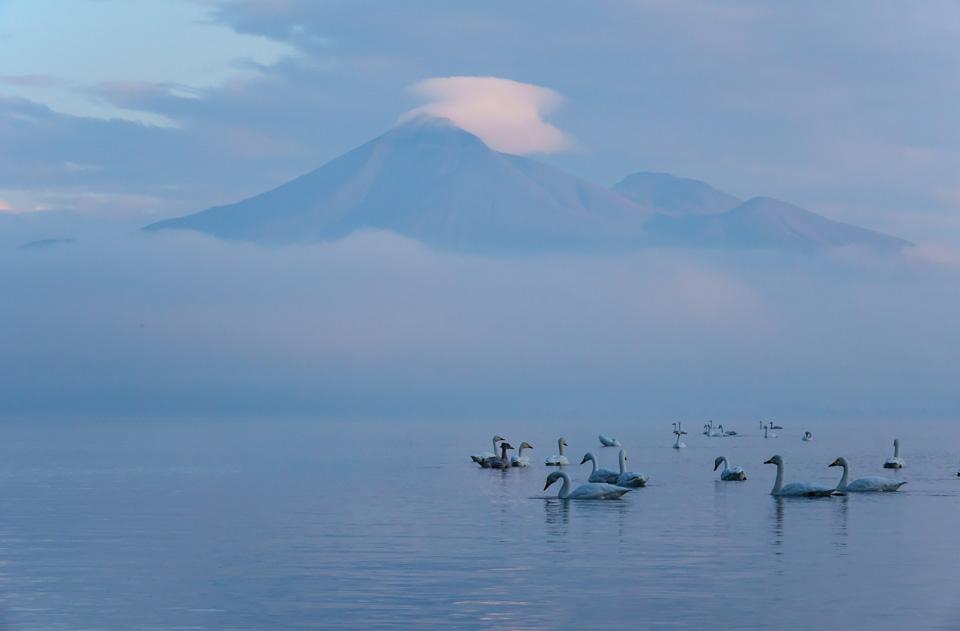磐梯山と猪苗代の白鳥