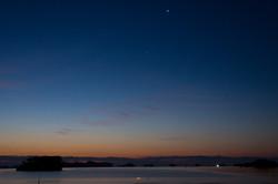 明けの明星と海に佇む白鳥