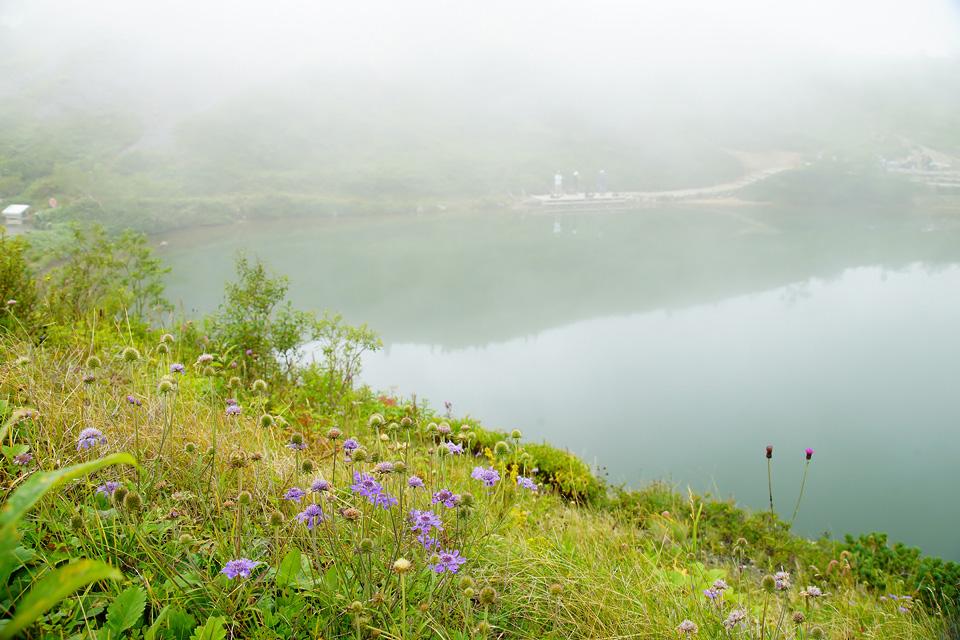 霧の八方池