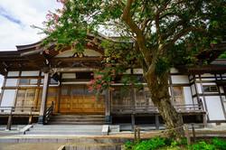 道安寺のサルスベリ