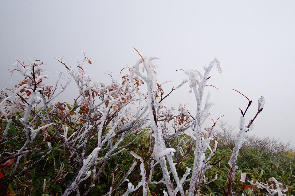 栗駒山 冬模様