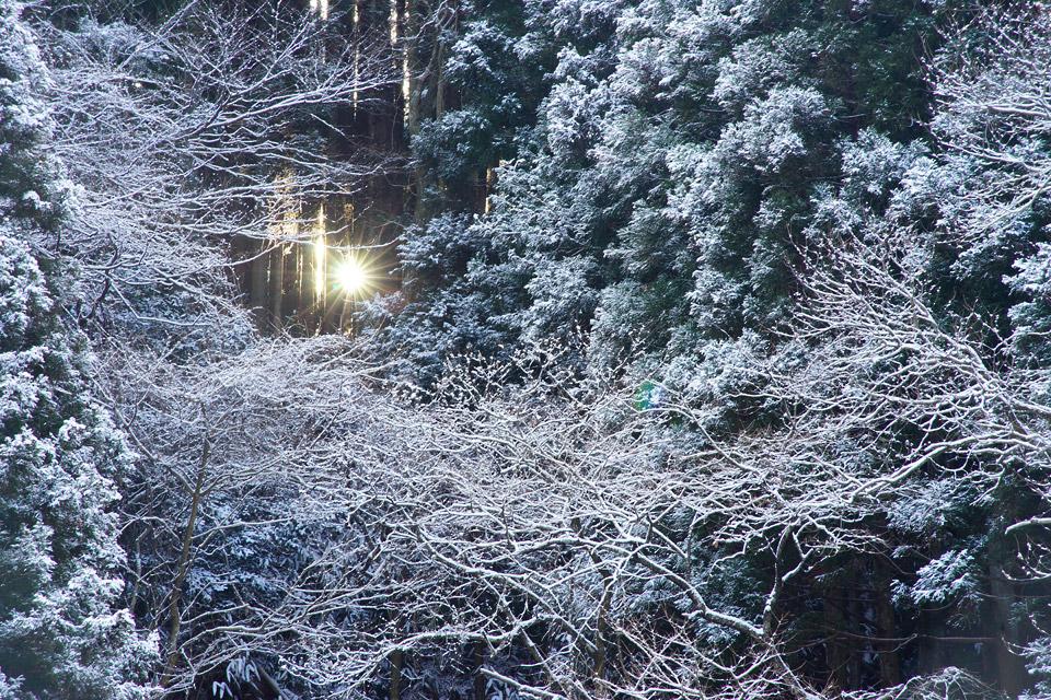 光源 寒風沢溜池