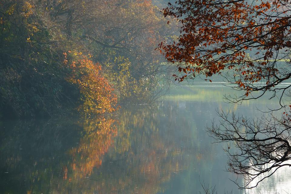 晩秋の寒風沢溜池