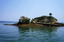 利府の海には変わった島が