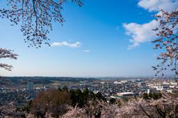 館山公園から