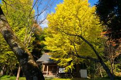 森郷 太子堂の秋景色